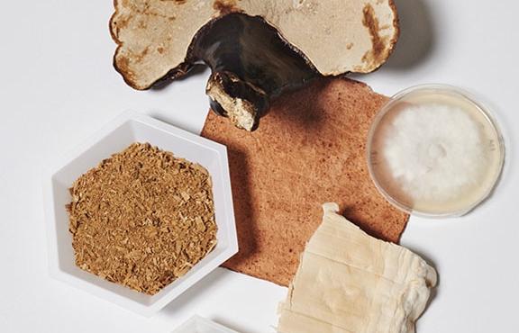 New materials: Mushroom Leather